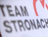Team Stronach-Logo
