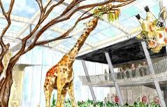 Visualisierung neuer Giraffenpark in Schönbrunn