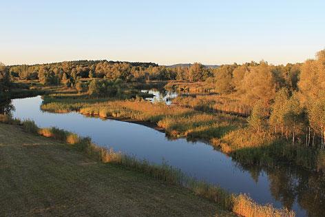 Das Vogelschutzgebiet Weidmoos bei Lamprechtshausen