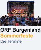 Promobutton Sommerfeste