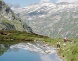 Tirol Werbung, See am Großvenediger, unter dem Auge Gottes