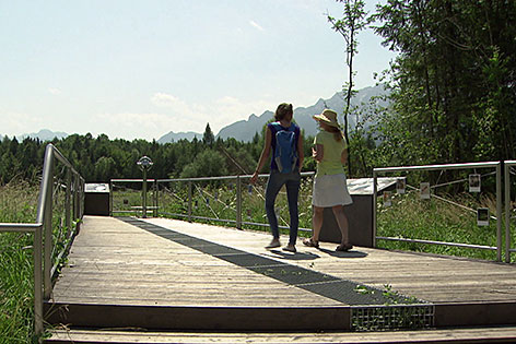 """Spaziergängerinnen am Themenweg """"Lebensader Taugl"""""""