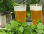 2 Gläser Bier, davor Hopfen
