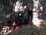Bergung auf Waldböschung in Penzing