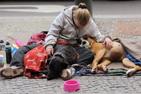 Obdachlose mit zwei Hunden auf einer Decke am Boden