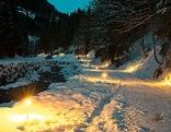 Winter-Waldweg in Leogang im Schnee