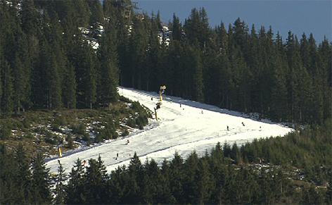Schneemangel Pisten Kunstschnee Skifahren Ski