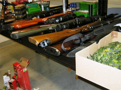 Waffenfund nach Cannabisfund