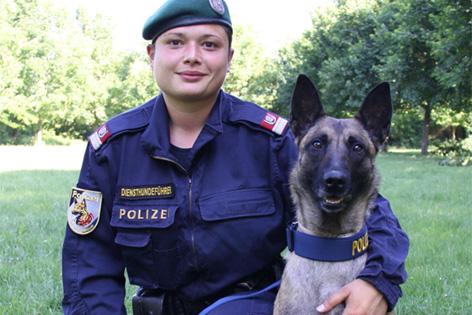 """Ehepaar vermutete Gelddiebstahl: Hund """"Evita"""" erschnüffelte Erspartes"""