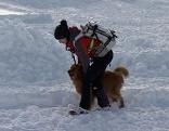 Lawinenhunde Bergrettung Lawine Schnee