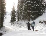 Rodelausflug Pleisenhütte