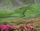 Mäandrierender Bach im Gebirge