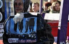Faschingsumzug in Maissau mit islamfeindlichen Plakaten