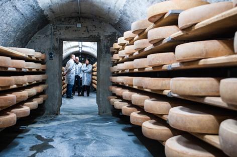 Blick in einen Käse-Reifungskeller