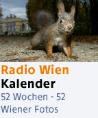 Marc Graf / Wiener Wildnis