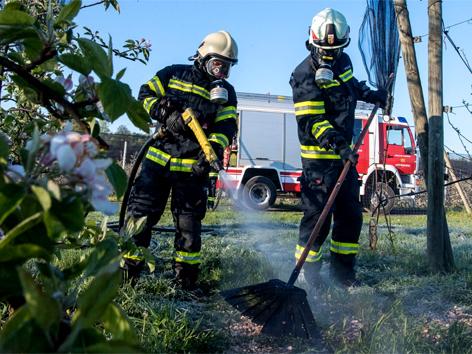 Feuer auf Obstplantage