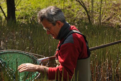Biologe Florian Glaser mit einem Kescher