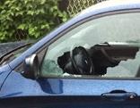 Einbruchsdiebstahl Auto