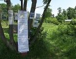 Bäume mit Protestzetteln im Hörndlwald