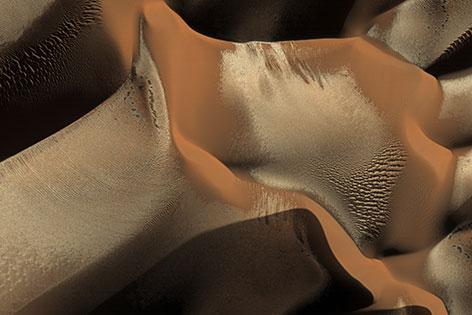 Reif auf Marsdünen im Winter