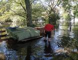Rheinholz unter Wasser