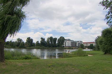 Donau Strombucht
