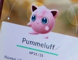 Pokemon go auf dem Handy