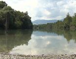 Alter Rhein Altach Baggerlöcher