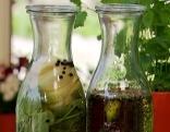 Kräuteröl und Kräuteressig selbstgemacht
