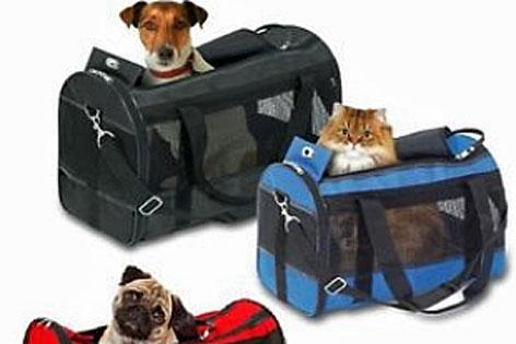 Beispiele für Reisetaschen für kleine Hunde und Katzen