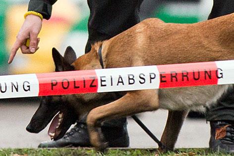 Sprengstoffspürhund der Polizei