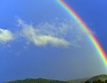 Regenbogen vor einem blauen Himmel