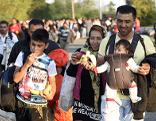 Polizei Flüchtlingszahlen