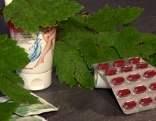Rotes Weinlaub Blätter, Creme und Kapseln