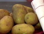 Kartoffeln gegen chronische Schmerzen