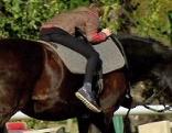 Kind liegt auf Pferd