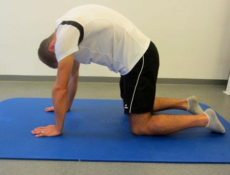 Mobilisierungsübung für den Rücken