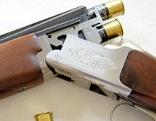 Schrotflinte mit Munition