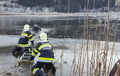 Hund Rettung vereister See