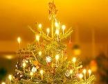 Christbaum Weihnachten
