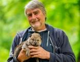 Kurt Kotrschal mit Wolfsbaby