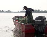 Bodenseefischer Diskussion
