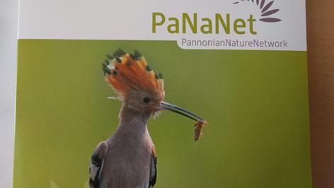 PaNaNet Bildein