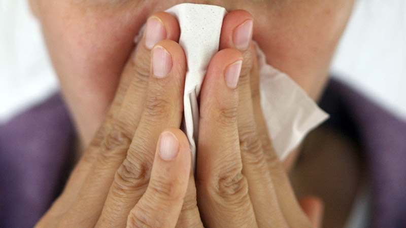 Schnupfen Grippe Schnäuzen