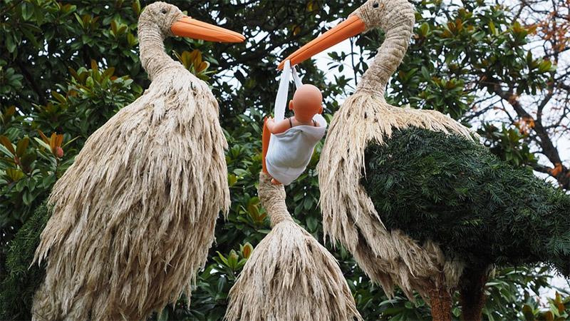 Storch Eizelle Samen Kinderwunsch Befruchtung
