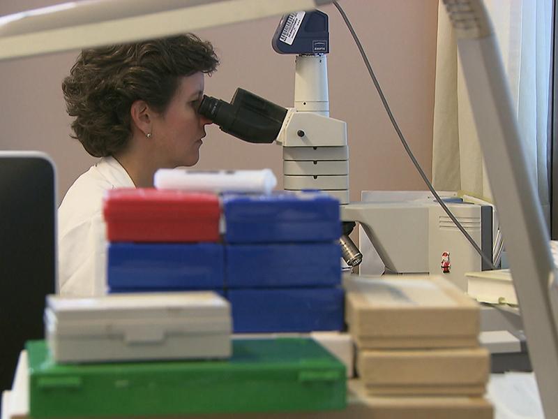 Krebs Therapie Behandlung Arzt Labor