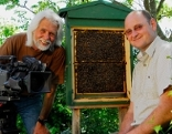 """""""Unterwegs Österreich"""": Bienen"""