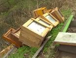 Bienenkasten zerstört
