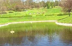 Teich im Kurpark Oberlaa
