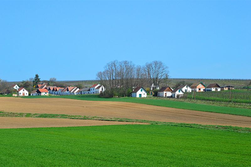 Kellergasse in Poysdorf